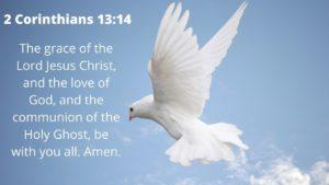 A dove flies in a blue sky